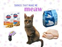 Things that make me meaw
