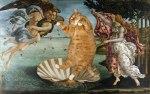 botticelli-the-birth-of-venus-cat-sm