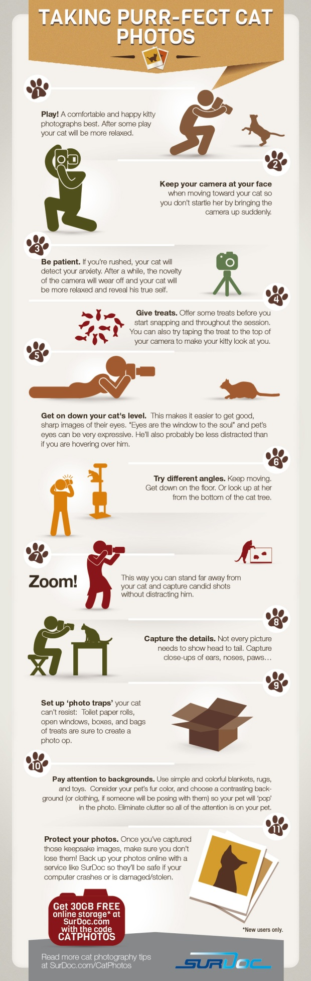 purrfect-cat-photos-infographic