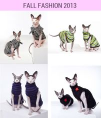 spynx fashion