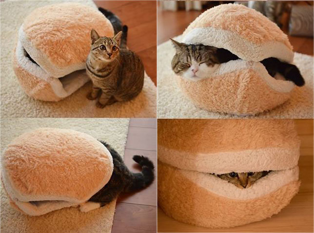 Amazing cat bed from the Oregon Cat project | The Paris Cat
